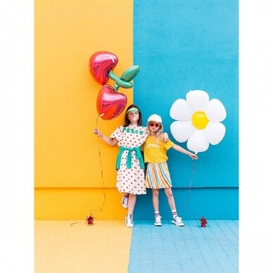 "Folinis balionas ""Vyšnios"" 3"