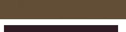 mazimazi logo